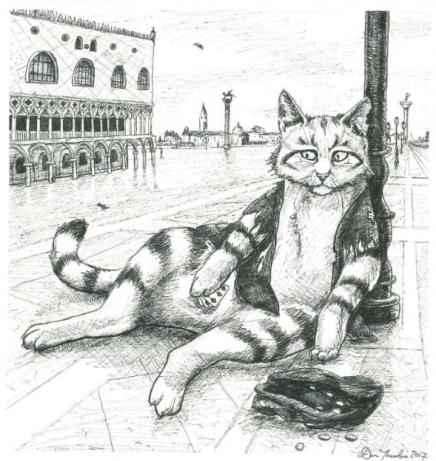 cat_moon_small